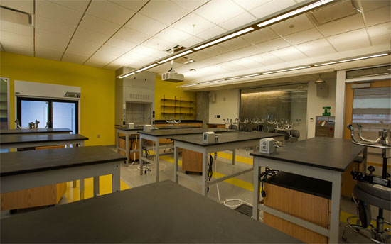 A lab in 20 Somerset