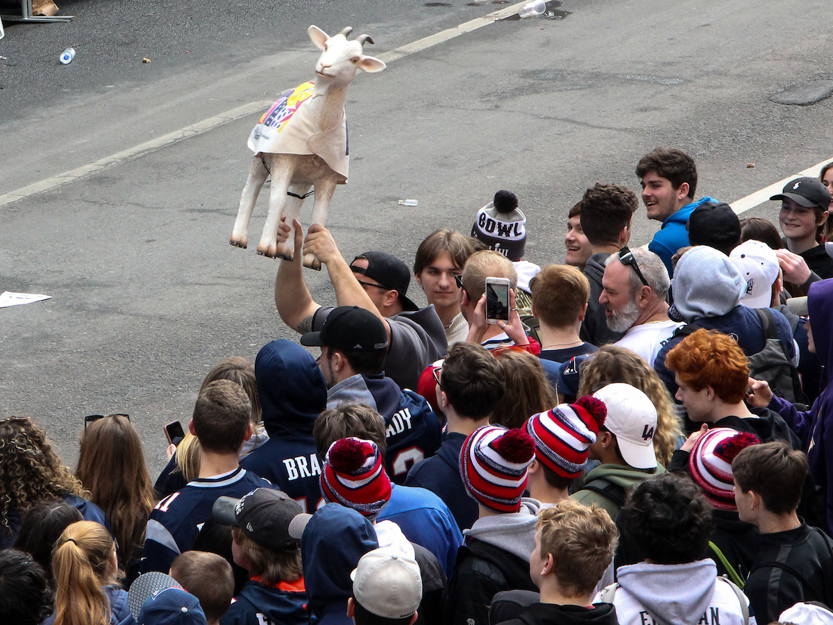 Student holding a goat in honor of the GOAT, Tom Brady at the Patriots Parade.