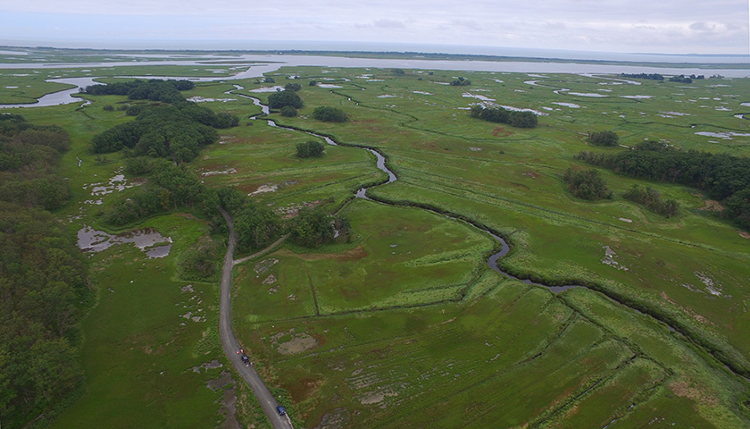 Aerial view of marsh with water running through it and ocean in distance